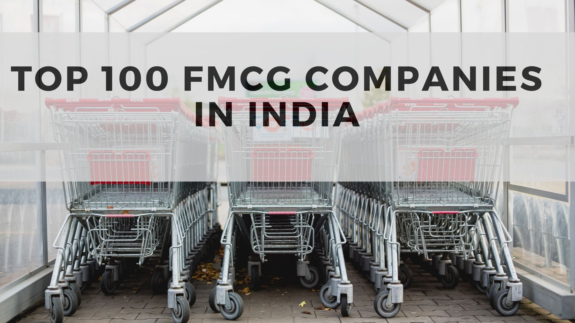 Top 100 Consumer Goods - FMCG Companies in India